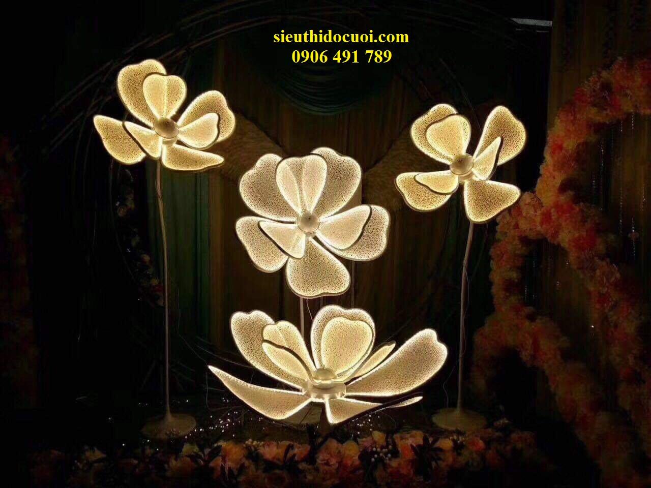 Dẫn lối hoa lan 3d bông lớn